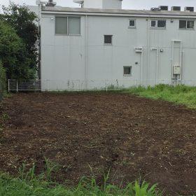 茶畑の伐採、抜根作業が完了しました。